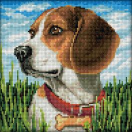 Diamond Painting Set - Beagle