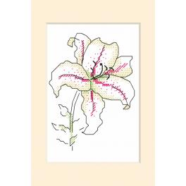 Stickpackung - Gelegenheitskarte - Lilie