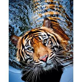 Diamond Painting Set - Tiger