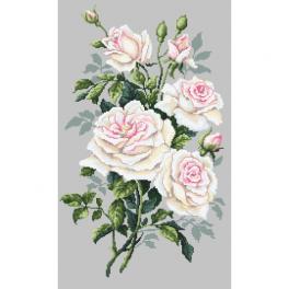 Set mit Aida mit Aufdruck und Stickgarn - Weiße Rosen