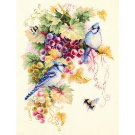 Stickpackung - Blauelster in Trauben