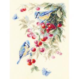 Stickpackung - Blaumeisen auf Kirschbaum