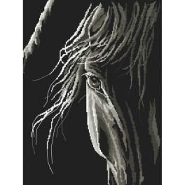Zählmuster - Pferdeblick