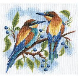 Stickpackung - Bunte Vögel