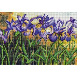 Diamond Painting Set - Blaue Iris