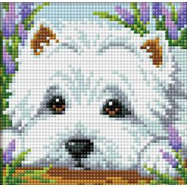 M AZ-1639 Diamond Painting Set - Weißer Hund