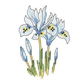 W 10256 Zahlmuster ONLINE - Subtile Schwertlilien