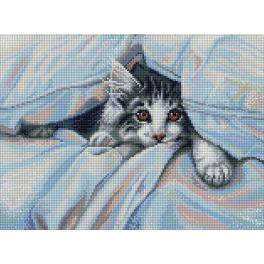 Diamond Painting Set - Katze unter Decke