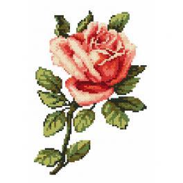 Zahlmuster online - Eine Rose - B. Sikora-Malyjurek