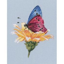 Stickpackung - Schmetterling auf Blume