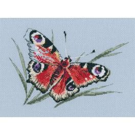 Stickpackung - Schmetterlingsschönheit im Sommer