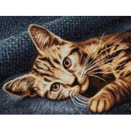 Diamond Painting Set - Braune Katze