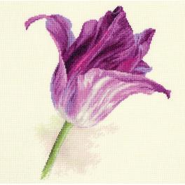 Stickpackung - Tulpe - lila Samt