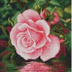 Diamond Painting Set - Rose am Wasser