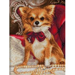 Diamond Painting Set - Chihuahua mit Fliege