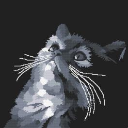Set mit Aida mit Aufdruck und Stickgarn - Graue Katze