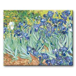 03903 Set zum Malen nach Zahlen - Schwertlilien - Van Gogh