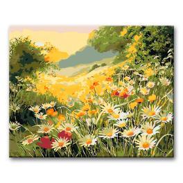 06285 Set zum Malen nach Zahlen - Sommerwiese