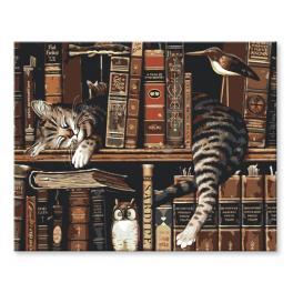 RA148 Set zum Malen nach Zahlen - Katze in Bibliothek