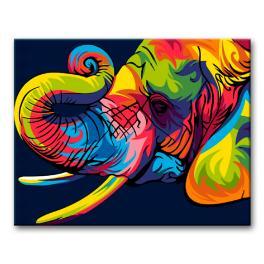 PA06 Set zum Malen nach Zahlen - Bunter Elefant