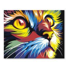 PA02 Set zum Malen nach Zahlen - Bunte Katze