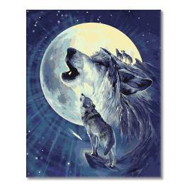T127 Set zum Malen nach Zahlen - Wolf in der Mond
