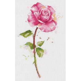 PAC 7190 Stickpackung - Aquarellrose