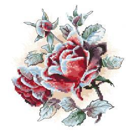 ZI 10305 Stickpackung mit Stickgarn und Perlen - Mit Reif bedeckte Rosen