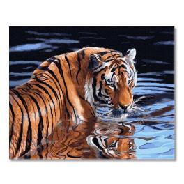PC4050652 Malen nach Zahlen - Tiger und Wasser