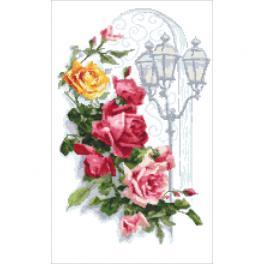 ZN 10446 Stickpackung mit Aufdruck - Bunte Rosen mit Laterne
