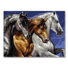 PC3040038 Malen nach Zahlen - Drei Pferde