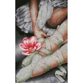 LPN-0157513 Stickpackung - Meine kleinen Ballerinaschuhe