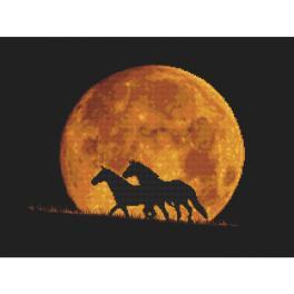 GC 10323 Stickvorlage - Pferde im Mondlicht