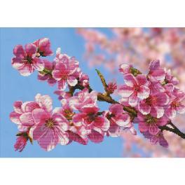 NCP 3262 Stickpackung mit Hintergrund - Sakura