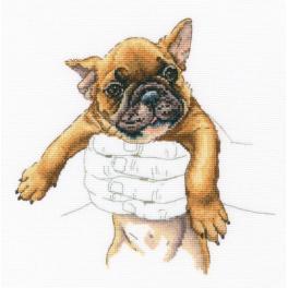 ZTM 821 Stickpackung - Auf der Hand - Französische Bulldogge
