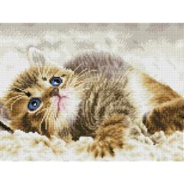 DQ8.006 Diamond Painting Set - Süßes Kätzchen