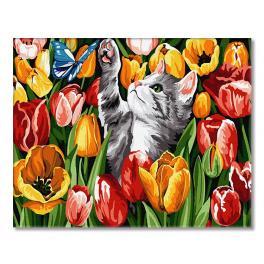 GX27243 Malen nach Zahlen - Tulpenkätzchen
