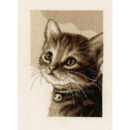 VPN-0158081 Stickpackung - Kätzchen